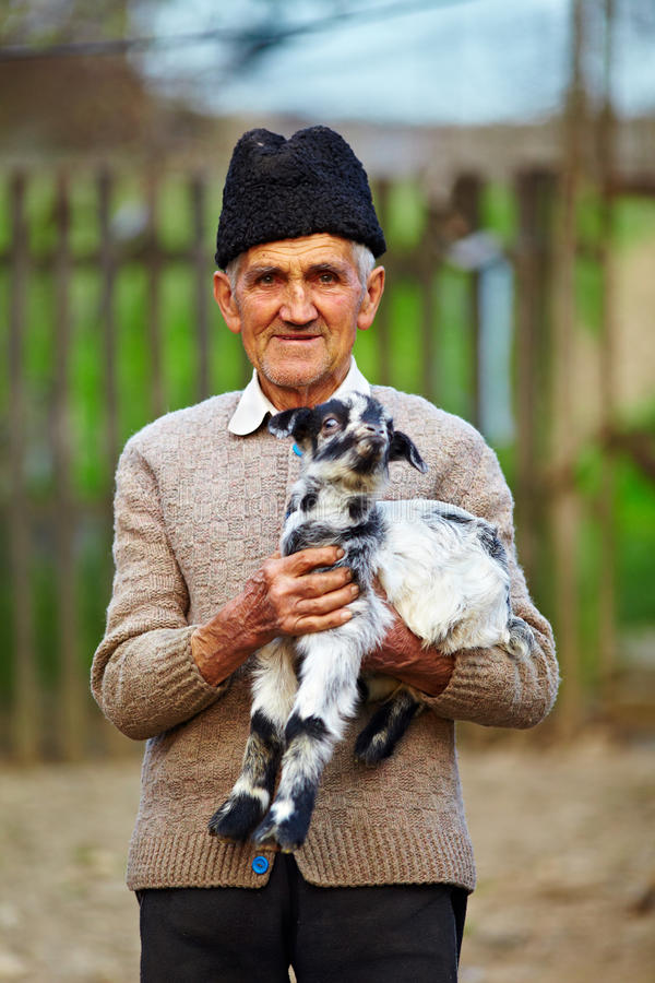 Old farmer with a baby goat stock photography
