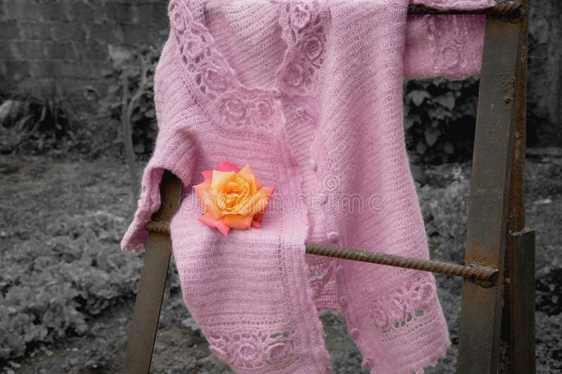 Old fashion design - knitted outfit on the ladder royalty free stock image