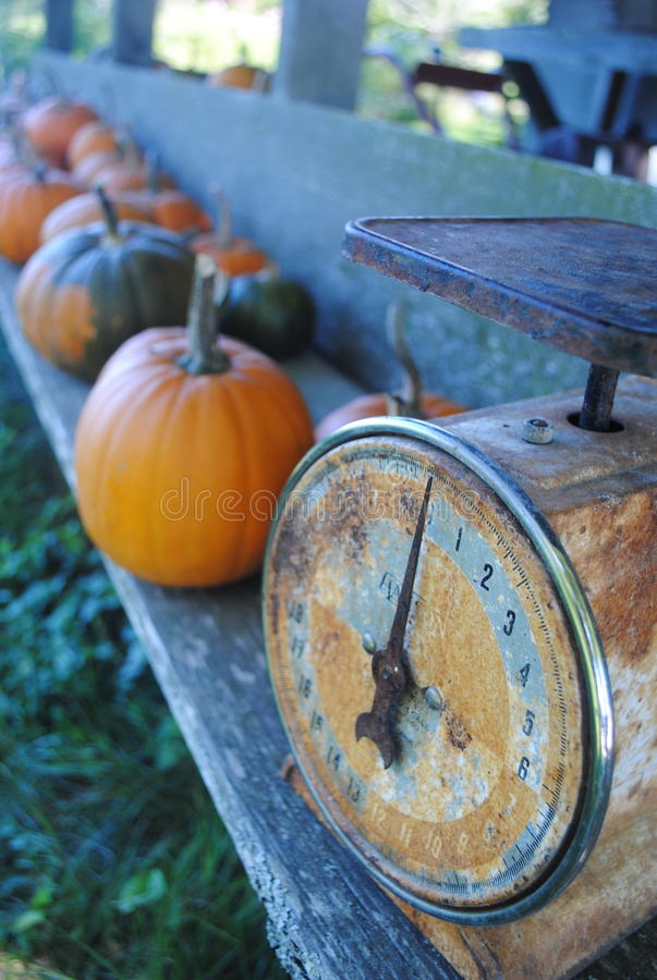 Old Fashioned Scale and Pumpkins stock photos