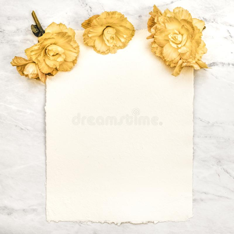 Old Fashioned, textured Paper Card with Yellow Spring Flowers with Texture, Warm Tone and grain processing.   A vertical flat layo. Ut that works horizontal royalty free stock photo