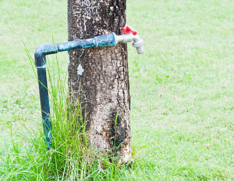 Download Old faucet stock photo. Image of exterior, grass, activity - 22788488