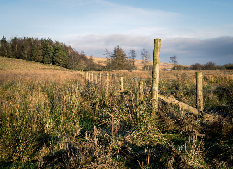Old Fence in Cumbria. Old fence amongst grassy moorland in Cumbria stock photography