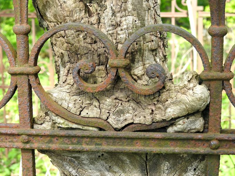 Old metallic fence in graveyard, Lithuania stock photography