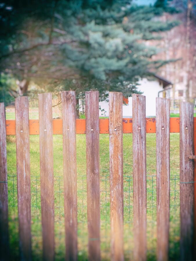 Old fence with tree in the background stock images