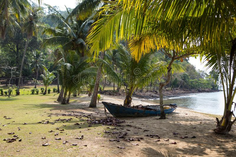 Old fishing boat on the shore among the palm trees stock photo