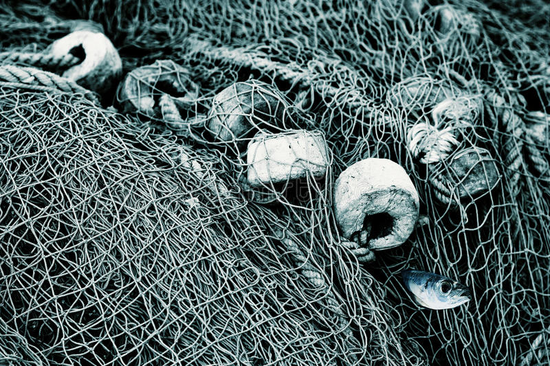 Old fishing nets stock image image of fish food pull for Fish nets near me