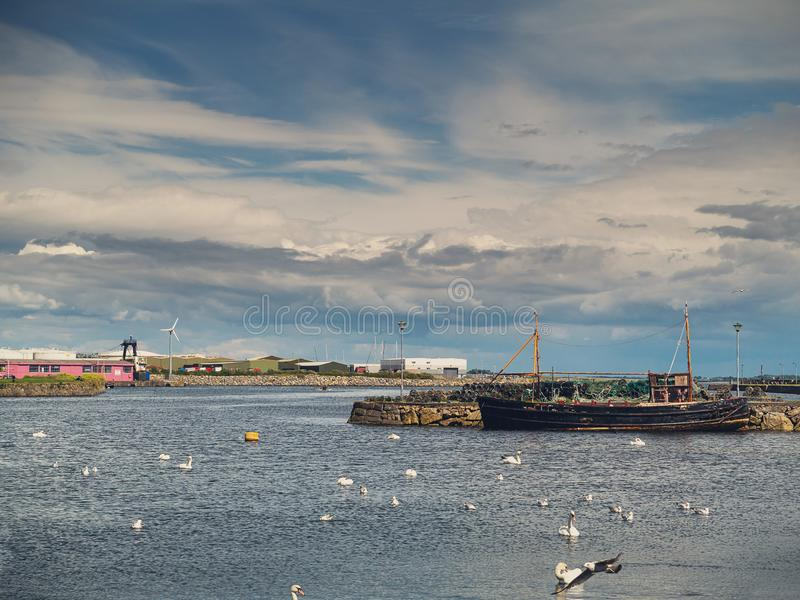 Old fishing ship and white swans colony, Claddagh, Galway city, Ireland, Cloudy sky royalty free stock photo