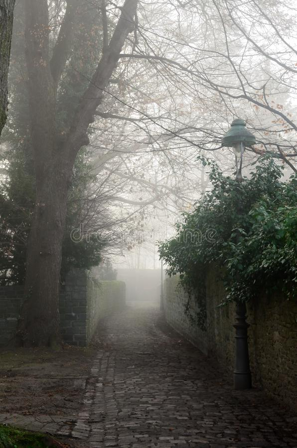 Old foggy street. In the early morning stock photography