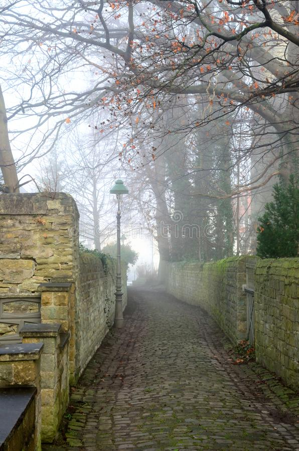 Old foggy street. In the early morning stock photo
