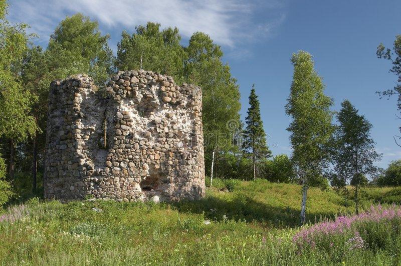 Old fortress and tree royalty free stock images