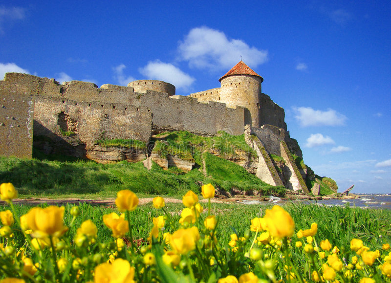 Old fortress and yellow flowers.