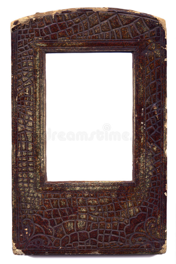 Old frame from natural skin stock photography