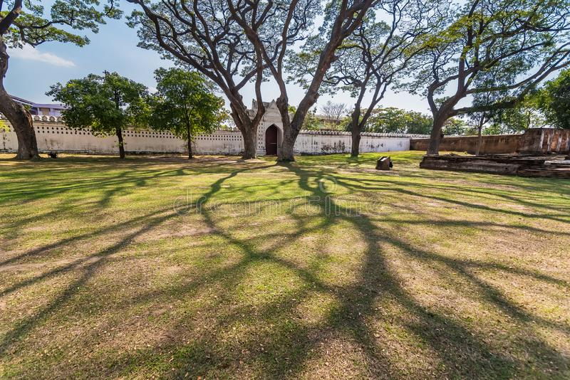 .Old and giant big tree on a green field with sunlight afternoon.Thailand. Old and giant big tree on a green field with sunlight afternoon.Thailand stock image