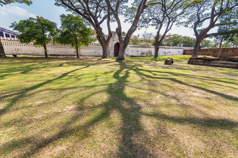 .Old and giant big tree on a green field with sunlight afternoon.Thailand. Old and giant big tree on a green field with sunlight afternoon.Thailand stock photography