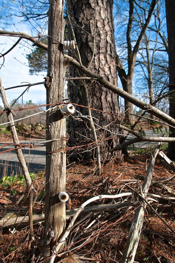 Insulators of an old electric fence. Old glass insulators nailed to a cedar post was used in electric fences to keep cattle within a pasture stock photos