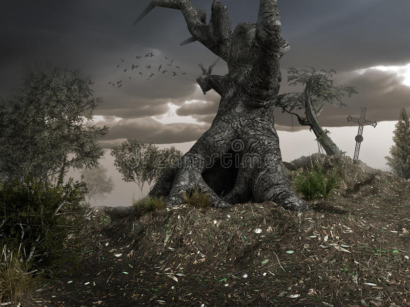 Download Old gnarly tree stock illustration. Illustration of background - 41295340