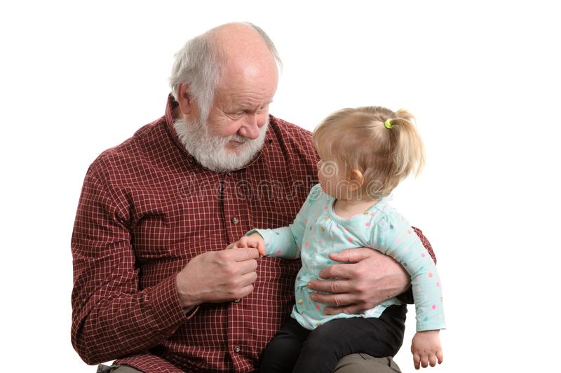 Old good grandpa and his little granddaughter. Little granddaughter sitting at lap of her grandpa, isolated royalty free stock images