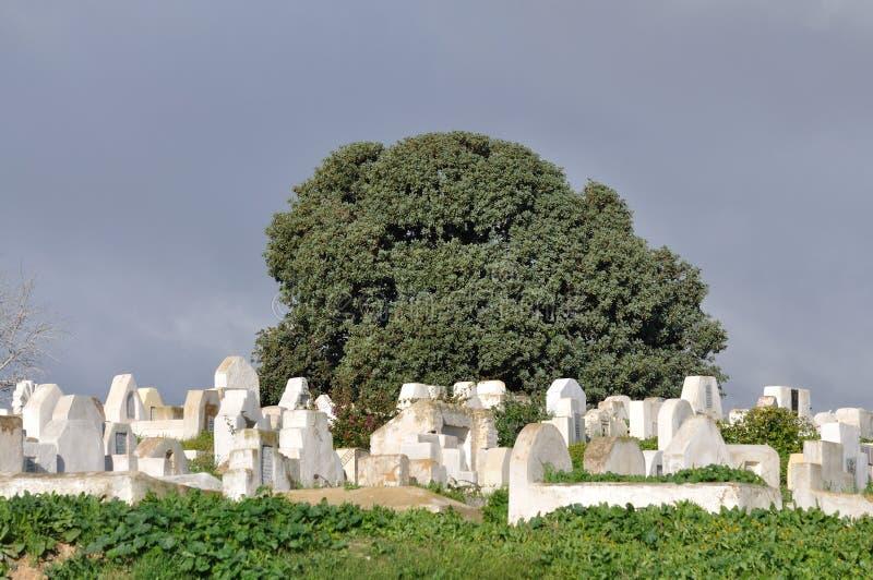 Old Graveyard In Morocco Stock Photo