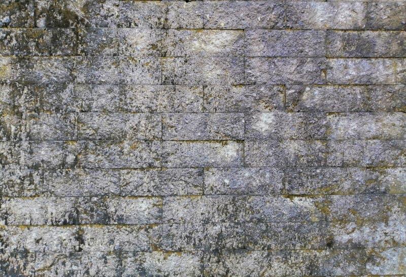 Old gray brick walls, Brick walls full of dirty stock photography