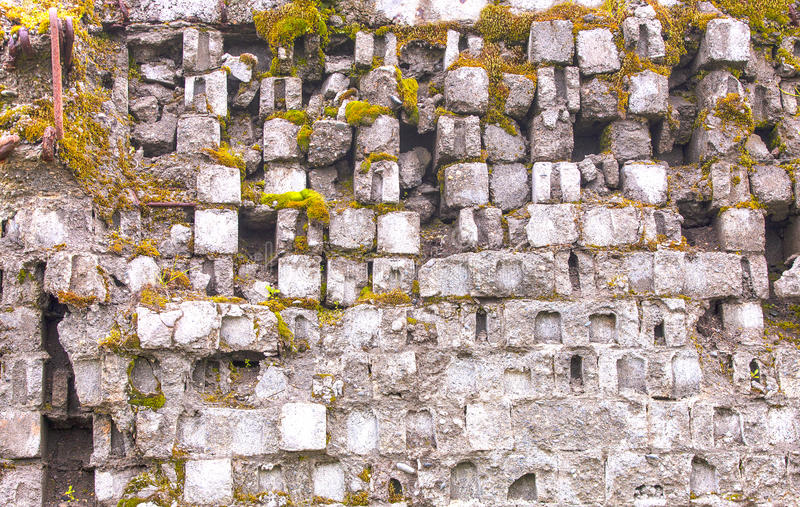 Old gray moss-covered brick wall stock images
