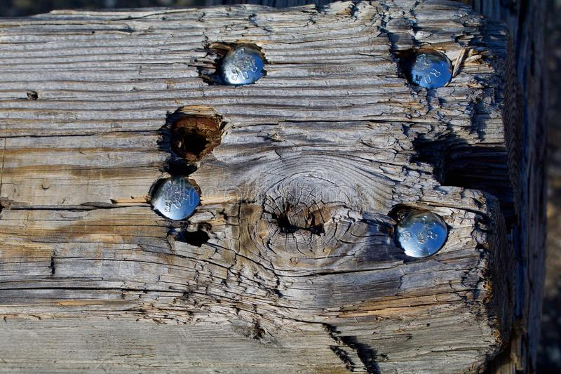 Old gray wooden beam with silver bolts stock images