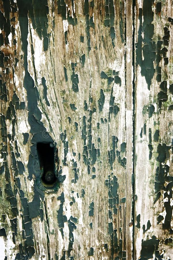 Old green door. With keyhole stock photo