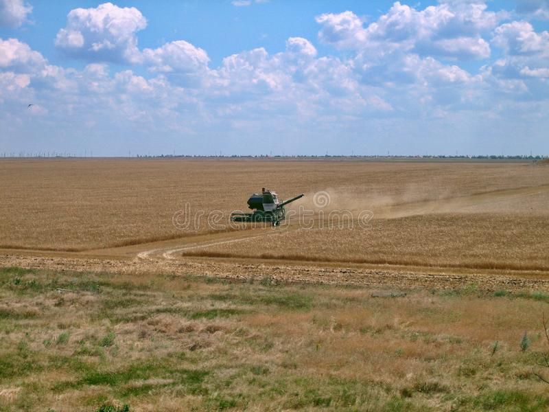 Old green harvester removes grain from the field during harvest. stock photography