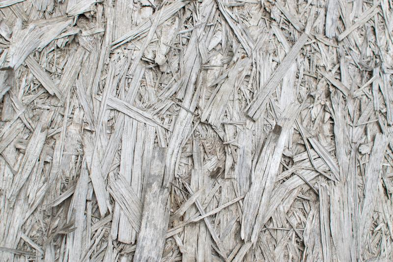 Old Grey Chipboard Osb Panel Texture. Old grey chipboard background top view. Aged osb panel texture or pressed and glued wood chips backdrop royalty free stock photo