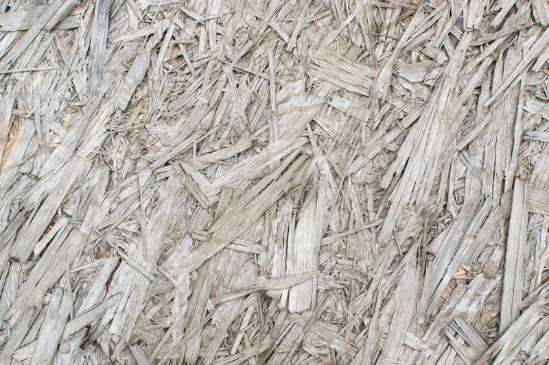 Old Grey Chipboard Osb Panel Texture. Old grey chipboard background top view. Aged osb panel texture or pressed and glued wood chips backdrop royalty free stock photography