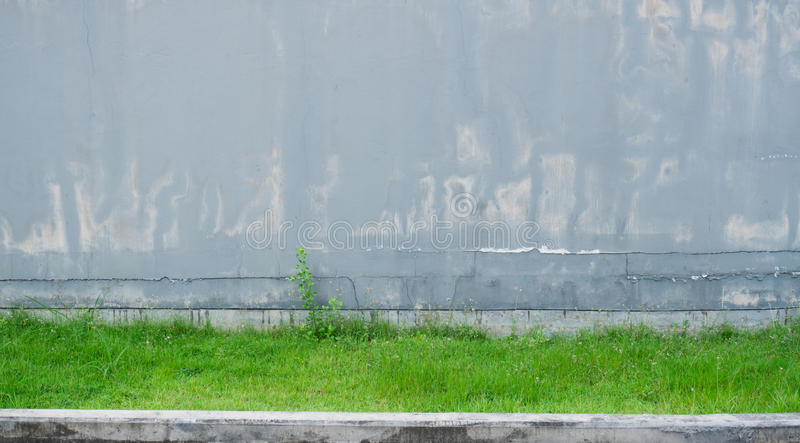 Old grey concrete wall pale and cracked. And have green grass at the bottom royalty free stock photo