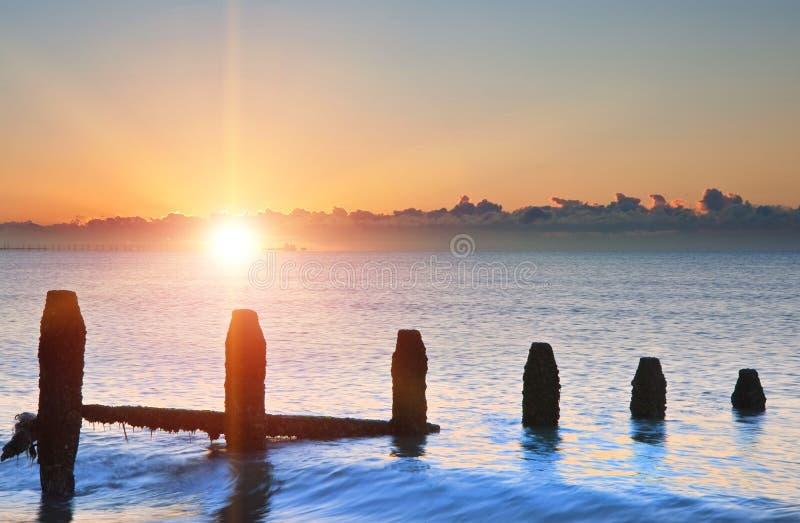 Old groynes on beach last defense at sunrise against tide. Old groynes on beach against incoming tide at sunrise royalty free stock images
