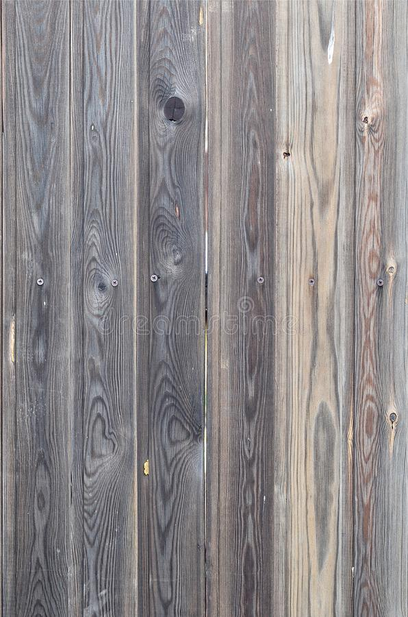 Old grunge dark brown wood panel pattern with beautiful abstract grain surface texture, vertical striped background or backdrop in royalty free stock photo