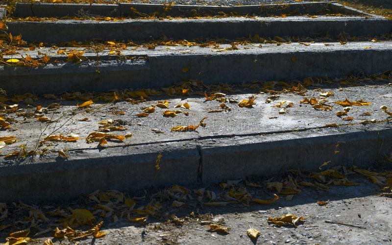 Old Grungy Concrete Stairway, Steps Covered With Yellow Leaves. stock images