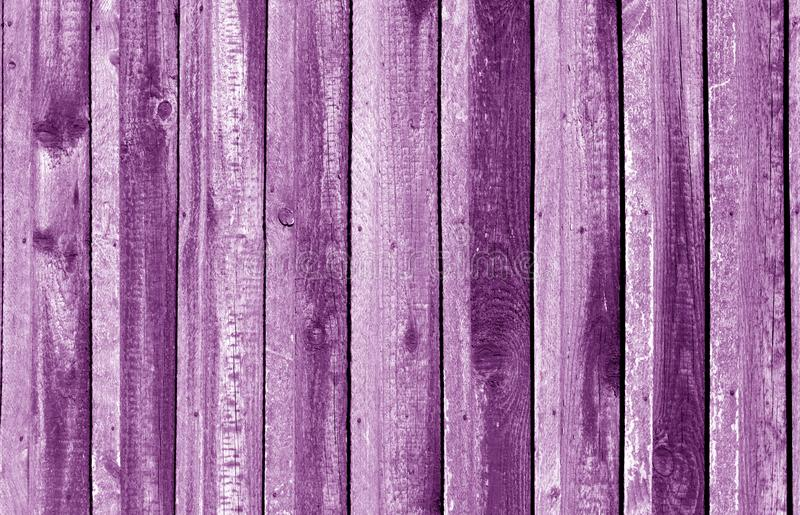 Old grungy wooden planks background in purple tone. VAbstract background and texture for design, color, vintage, weathered, timber, wall, tree, carpentry royalty free stock photography