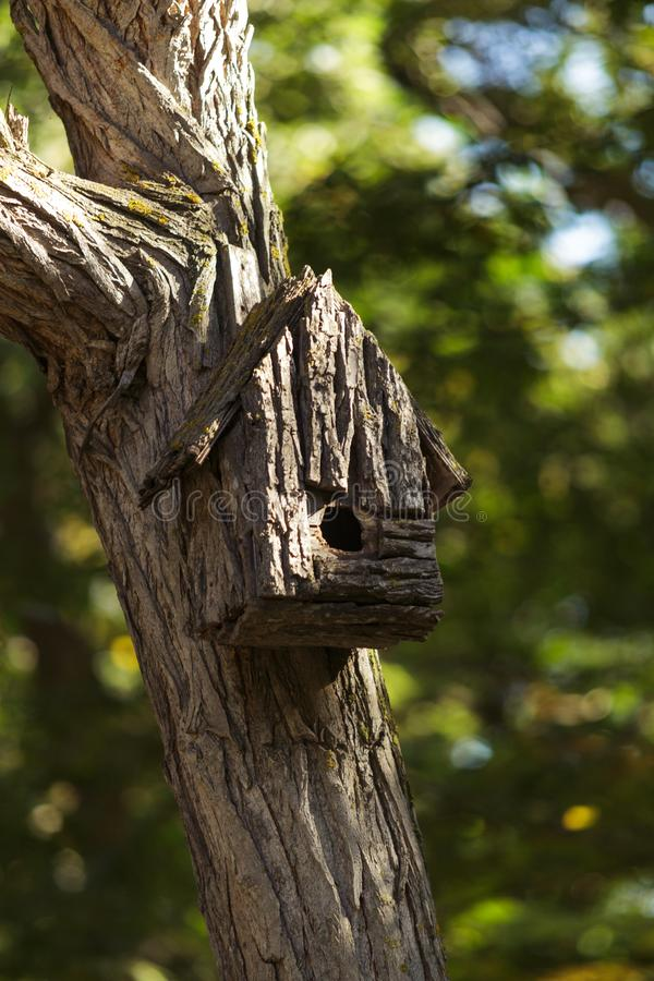 An old hand-made birdhouse on a tree stock image