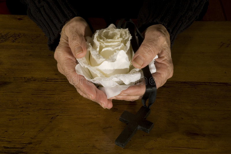 Old hands with white rose and cross royalty free stock photography