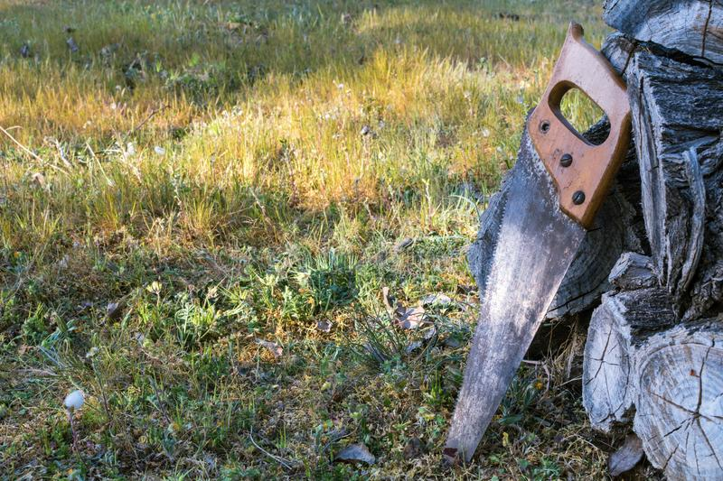 Old saw resting on a pile of wooden lumber royalty free stock photos