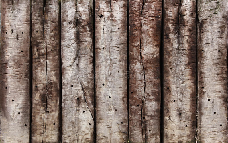 Old hardwood stock photography