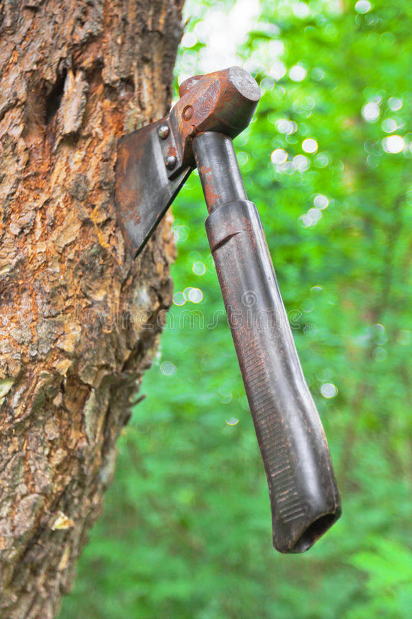 Download Old hatchet in wood stem stock image. Image of countryside - 25467515