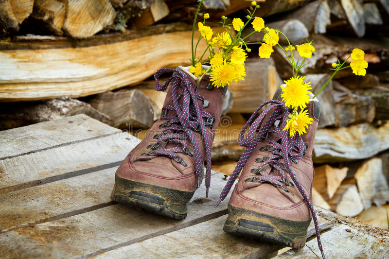 Old hiking boots. With flowers on a wood pile royalty free stock photography