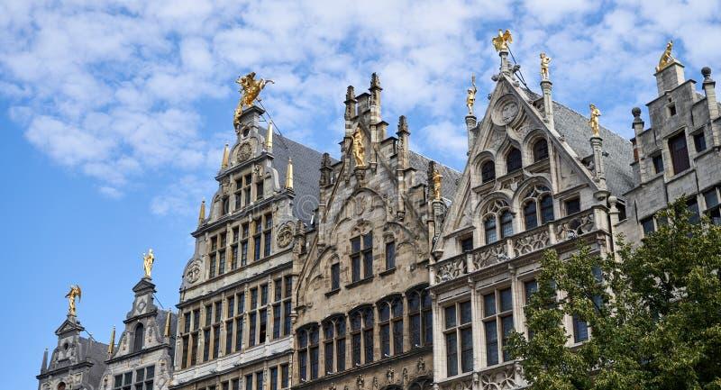 Old houses in Antwerp Belgium. Old historic houses in Antwerp Belgium With golden statues royalty free stock image