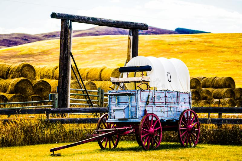 Old horse carriage in ranch stock photos