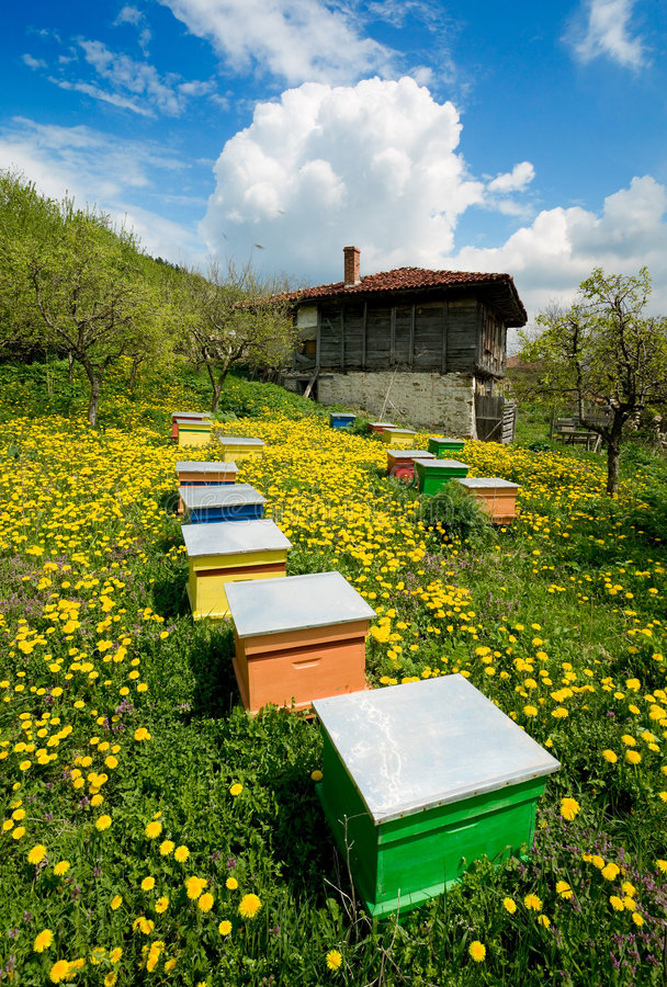 Old house and apiary stock photography