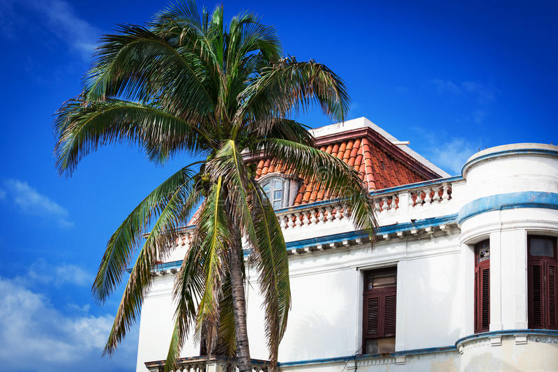 Download Old house and palm stock image. Image of sale, color - 30317433