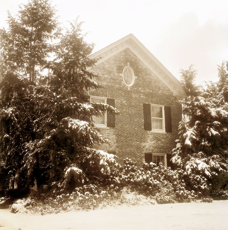 Old House and Pine Trees in Winter, Sepia royalty free stock photos