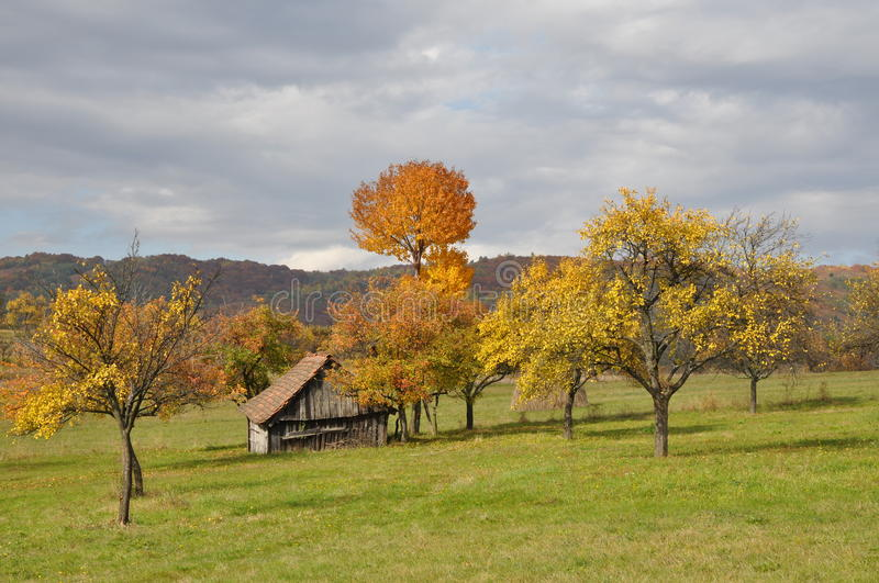 Old house and trees in the fall season. Orchard in the fall season with old shelter house royalty free stock photos
