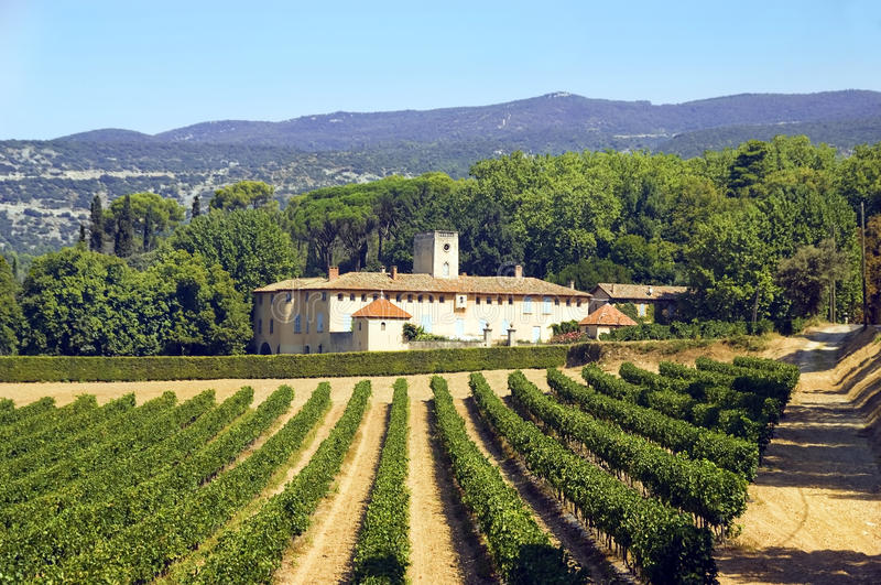Old house and vineyard in the region of Luberon, France royalty free stock photography