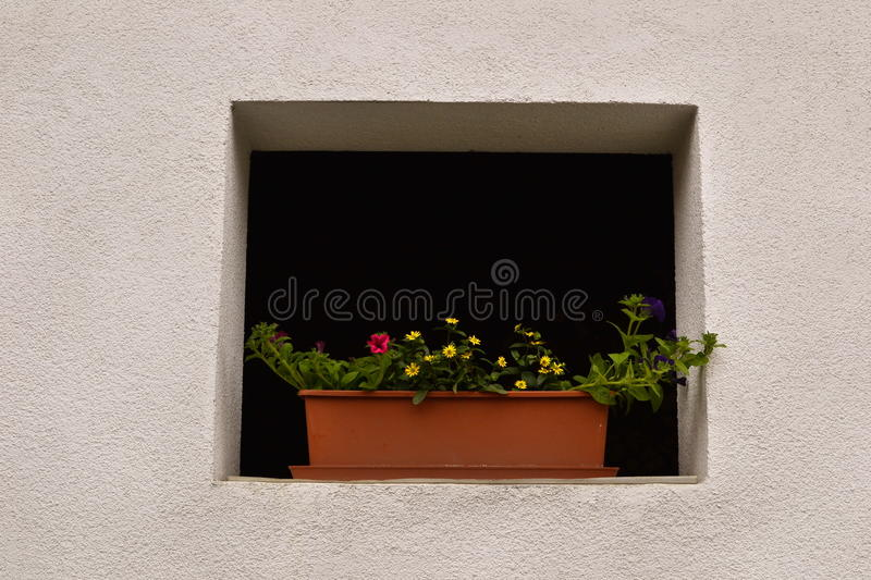 Window decorated with beautiful flowers. Old house with a small window without glass decorated with a vase of beautiful flowers royalty free stock photo