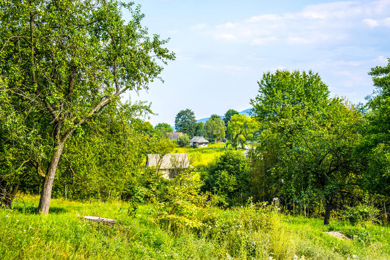 Old houses in a picturesque place. Old wooden houses in a picturesque place of Western Ukraine. Trees and grass around stock image