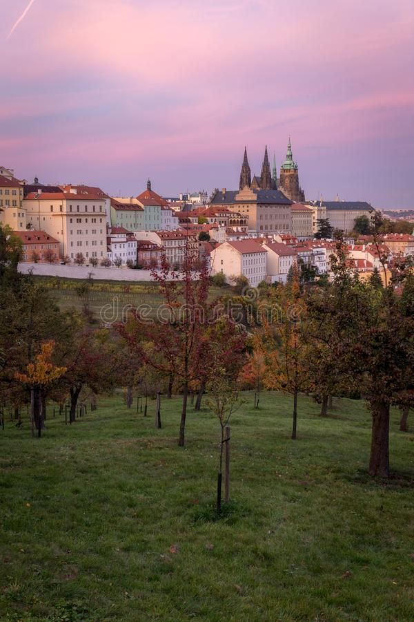 Old houses, St. Vitus Cathedral and Petrin hill park in Prague, stock image